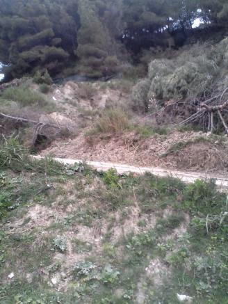 Erosion an der Küste, durch illegale Strassen und Rodungen